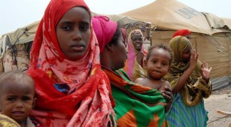 1,200 SOMALIS RETURN HOME FROM WAR-TORN YEMEN