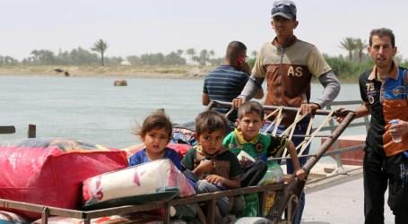 MORE THAN 90,000 FLEE IRAQ'S ANBAR PROVINCE