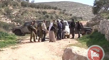 ISRAELI SETTLERS DESTROY 250 OLIVE TREES IN NORTHERN HEBRON
