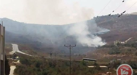 ISRAELI SETTLERS SET FIRE TO PALESTINIAN AGRICULTURAL LAND IN NABLUS