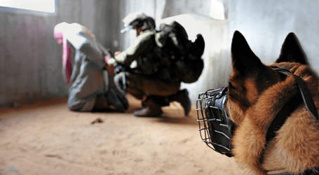 ISRAEL USED DUTCH DOGS TO TERRORIZE PALESTINIANS