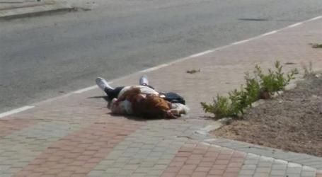 Israeli Forces Kill Palestinian Teenage Girl at Nablus Major Checkpoint