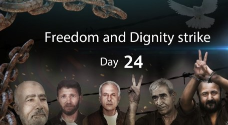 Israeli Authorities Continue Attempts to Break Mass Hunger Strike on 24th Day