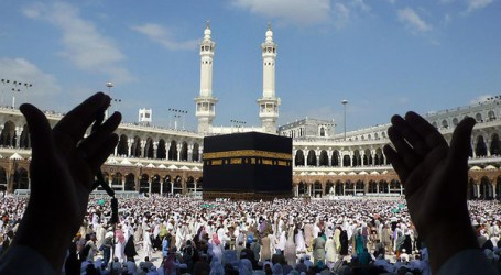 Over 1.4 Million Pilgrims Arrive in Holy Cities to Perform Hajj