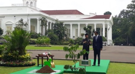 Ebony Diplomacy of Indonesia-Qatar Relationship