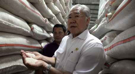 Indonesian Gov't Decides to Import Rice from Vietnam, Thailand