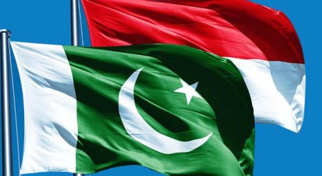 Pakistan, Indonesia Exchange Views on Political, Security, Economic Policy Areas