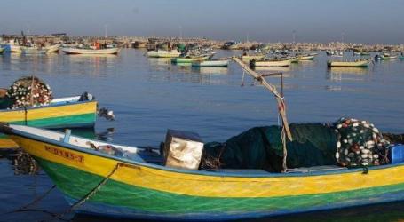Fishing Zone in Gaza Narrowed Down Again by Israel