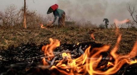 BNPB: Ogan Hilir Regency being Model in Preventing from Fires