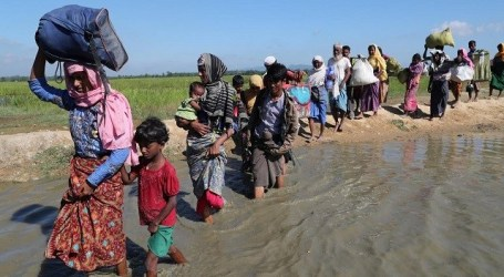 Britain Donates GBP 8 Million for Rohingya Refugees in Bangladesh