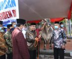 President Jokowi Hands Over 1.88 Tons of Sacrificial Cow to Istiqlal Mosque