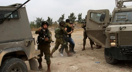 Occupation Forces Forcibly Stop Olive Tree Planting