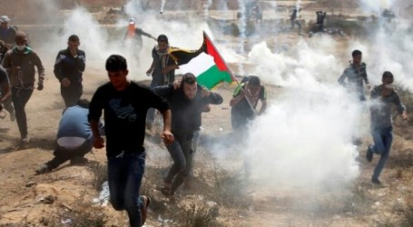 As 15 Palestinians Injured in Israeli Anti-Settlement Protests