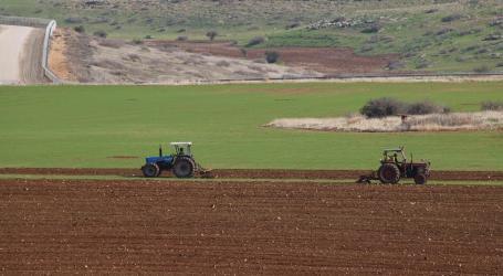 Israeli Occupation Forces Halt Work on an Agricultural Road in Northern Jordan Valley
