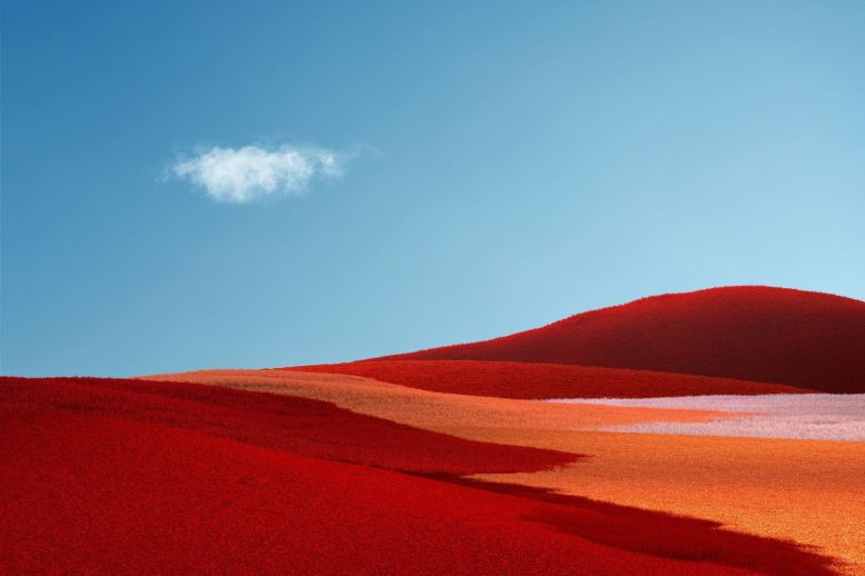 Microsoft-Surface-Duo-Wallpapers-Mohamedovic (1)