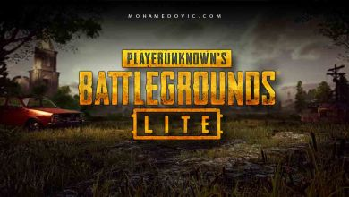 Download PUBG Lite for Windows