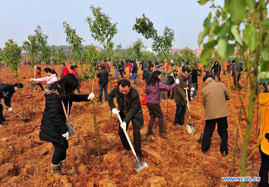 Image result for lots of people planting trees