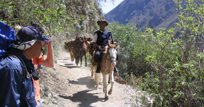 The Inca Trail and three alternative climbs to Machu Picchu