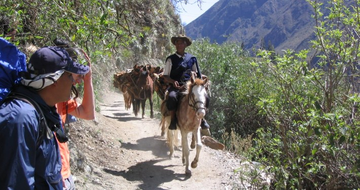 The Inca Trail and three alternative climbs to Machu Picchu