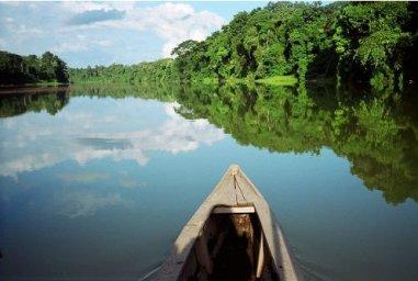 Travel Tips Manu National Park