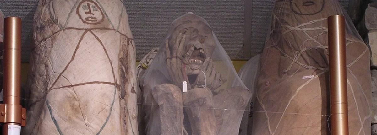 Mummie Chachapoya