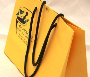 Paper Bag with cord