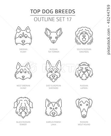 Top Dog Breeds Pet Outline Collection Vector Stock Illustration 48244769 Pixta