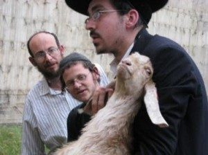Jewish man with lamb at Passover