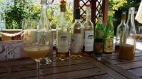 Shooting with winery Feiler-Artinger