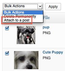 Attach Items in Bulk in Media Library