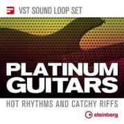 VST Sound Loop Set_Platinum_Guitars