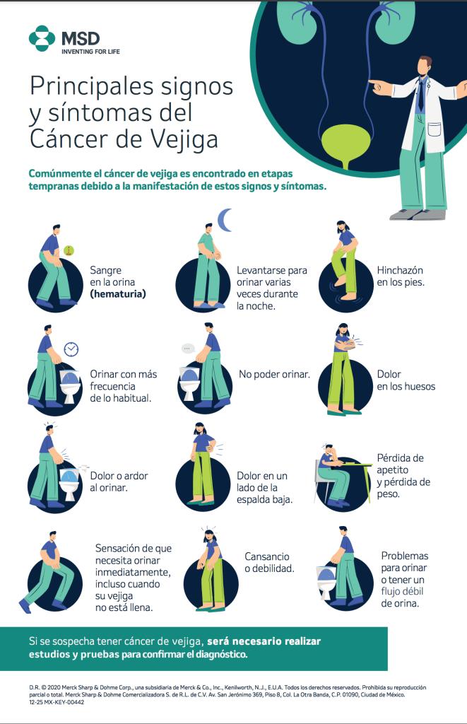 Qué es el cáncer de vejiga