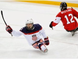 Sochi Sledge Hockey