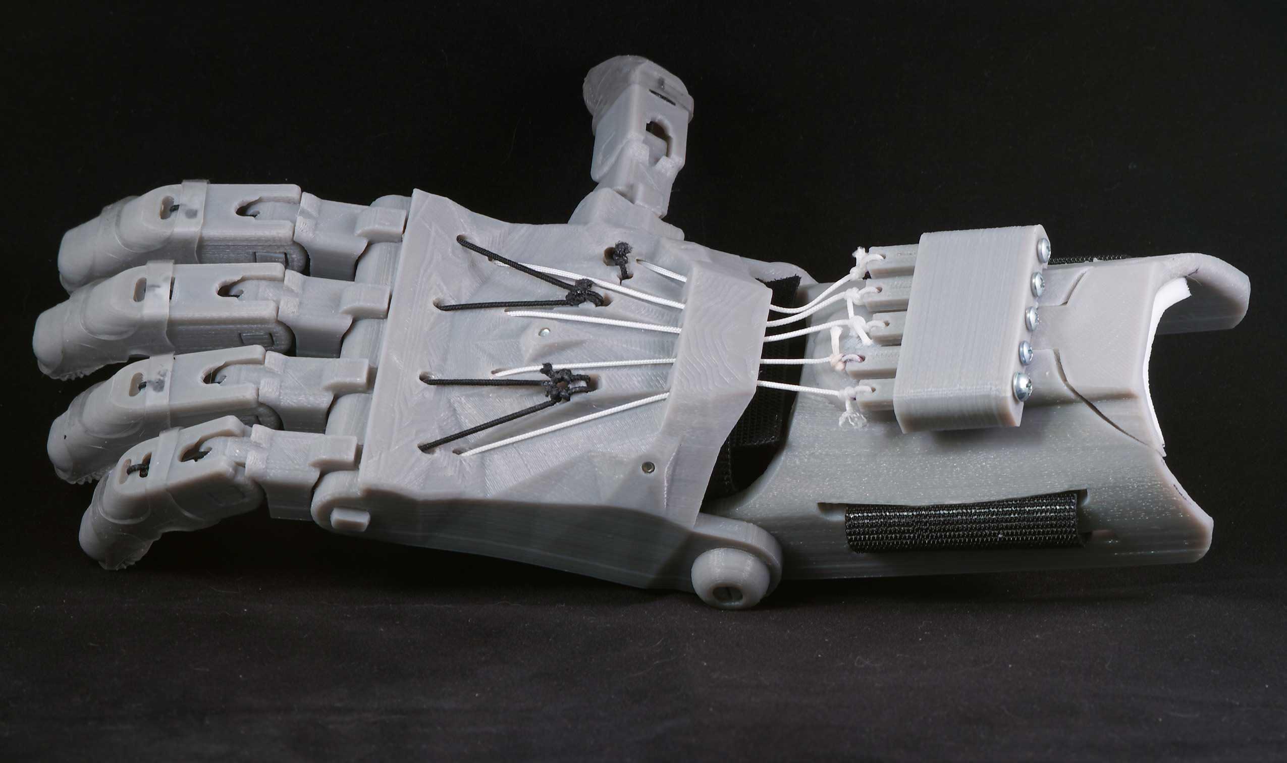 Raptor-Hand