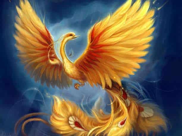 φοίνικας πουλί σουρεάλ