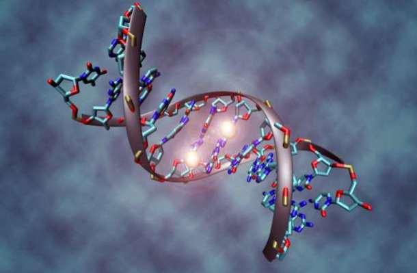 DNA_methylation
