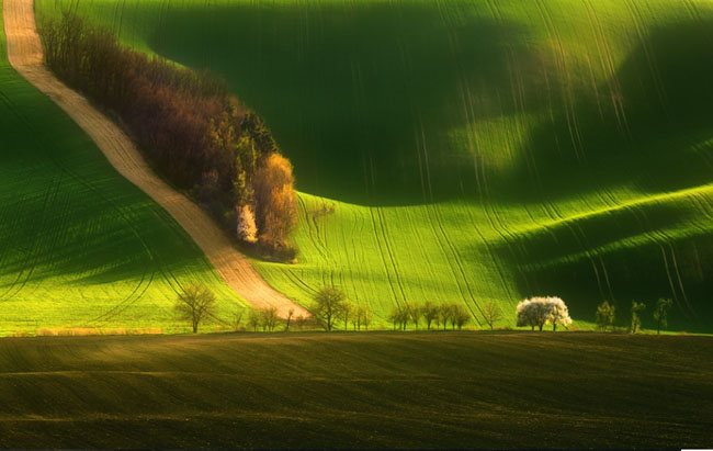 50+ Collection of Breathtaking Landscape Photography 136