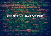 ASP.NET vs JAVA vs PHP - Choosing the Best Programming Language 1