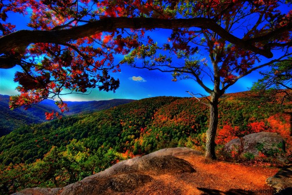 15+ Breathtaking Examples of Nature Photography 6
