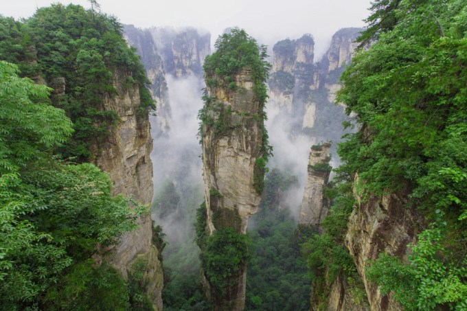 Forest park in China