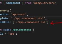 Styling And Defining CSS In Angular App 5
