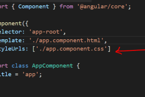 Styling And Defining CSS In Angular App 12
