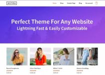 Best Free Responsive WordPress Themes of 2019 4