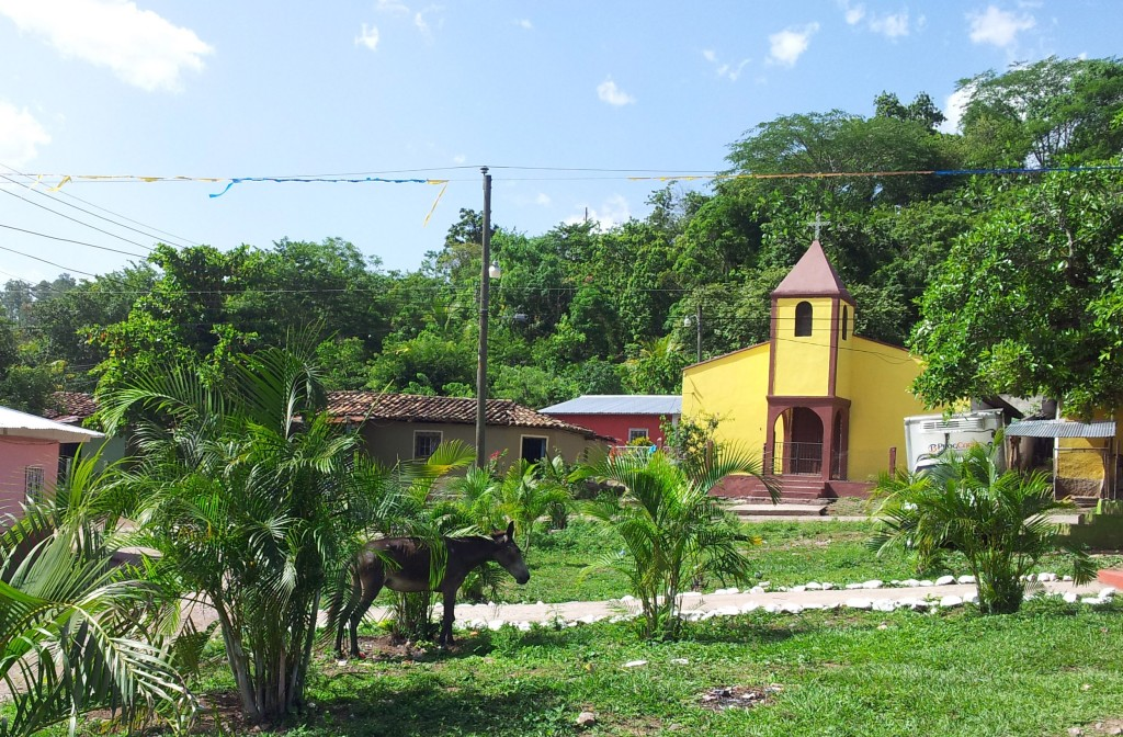 San Juan - the cooperative land is about 30 minutes walk behind the village