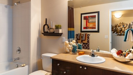 Hall bath with shower tub combo