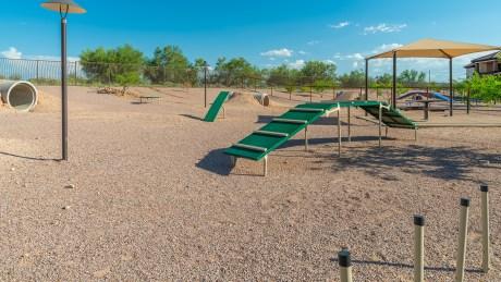 Tucson National Dog Ranch 2