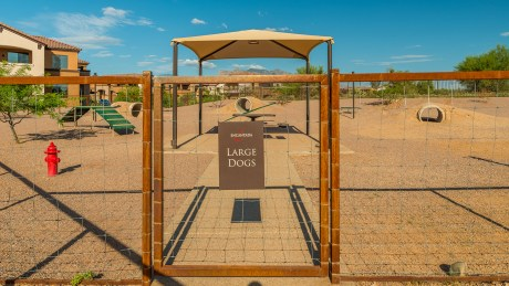 Tucson National Dog Ranch 5
