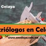Nutriologos en Celaya
