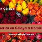 Florerias en Celaya a Domicilio