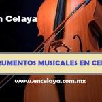 Instrumentos Musicales en Celaya